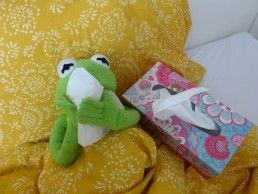 Kermit Frog Ill Bed Tissue